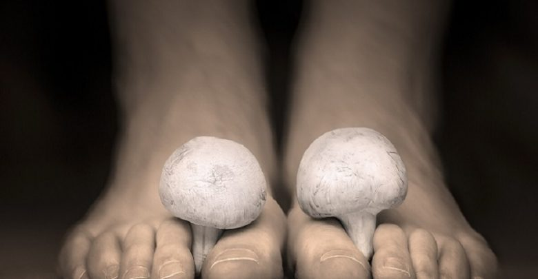 قارچ ناخن