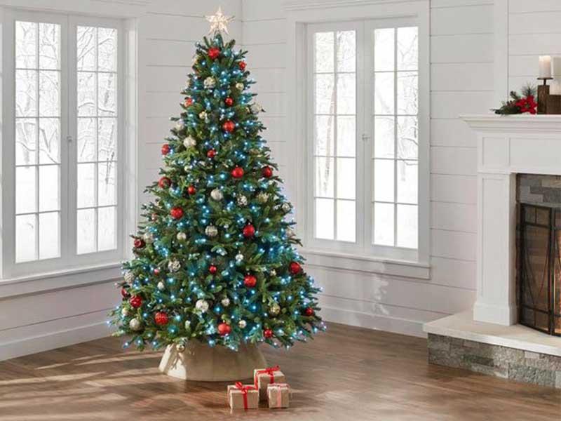 درخت کریسمسی