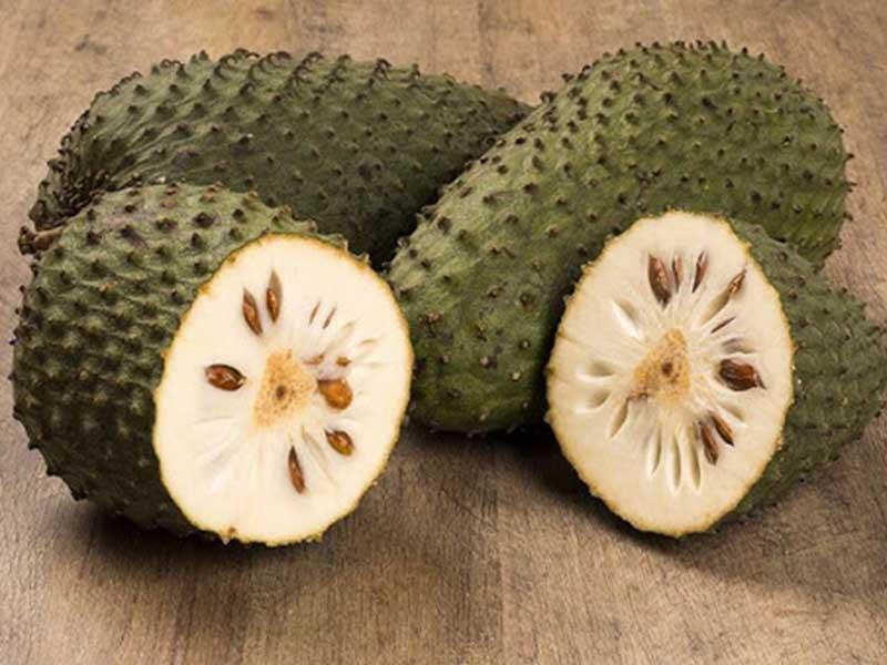 میوه ساپادیل
