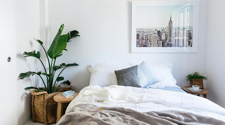 گیاه در اتاق خواب